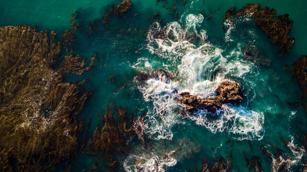 Call for Expressions of Interest (EOIs) to Advance Ocean Observing in California