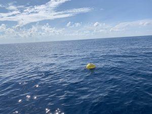 CDIP Wave Buoys
