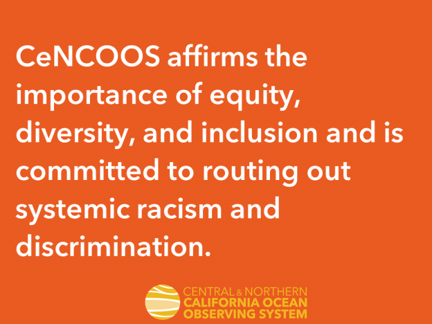 Our Commitment: Diversity, Equity, and Inclusion